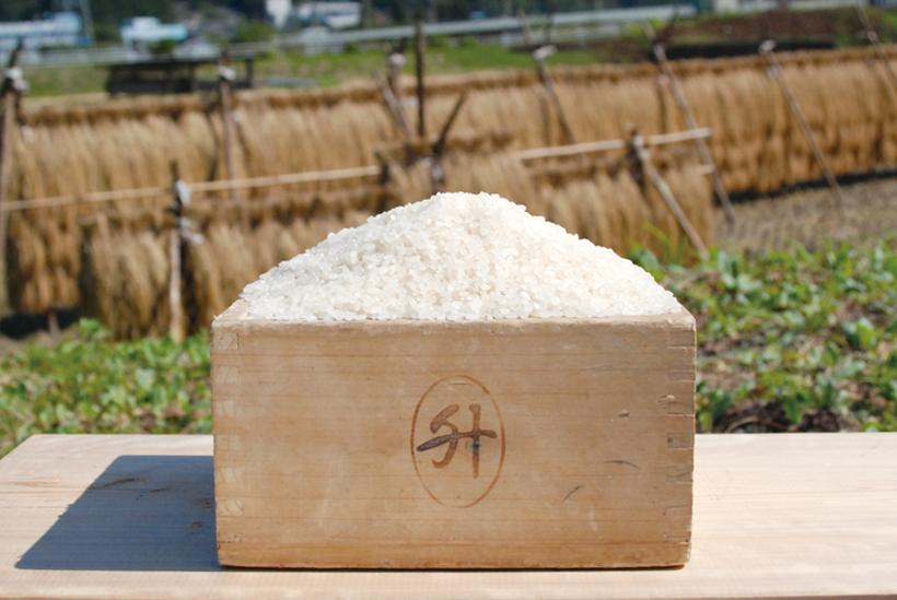 *はんでえ米 1kg 500円(税込)、玄米 1kg 400円(税込) 食べ方…炊きたてをそのまま、おむすびなど 栄養…炭水化物、たんぱく質、食物繊維等 時期…新米は10月末から販売