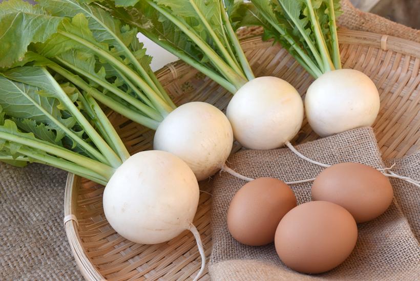 *カブは身がしっかりしており煮崩れしにくい。煮込むと身がとろっとして美味。 黄身がつまめる濃厚な味わいの卵も販売中。