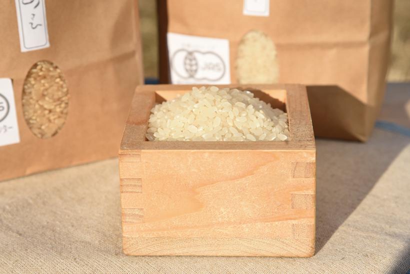 *朝日 5kg3,300円(税込) 食べ方…炊きたてをそのまま 栄養…炭水化物、たんぱく質、食物繊維等 販売時期…通年
