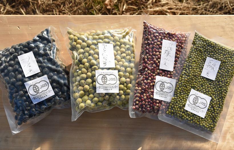 *黒豆・青大豆・小豆など、オーソドックスなものから、緑豆など珍しい物まで栽培