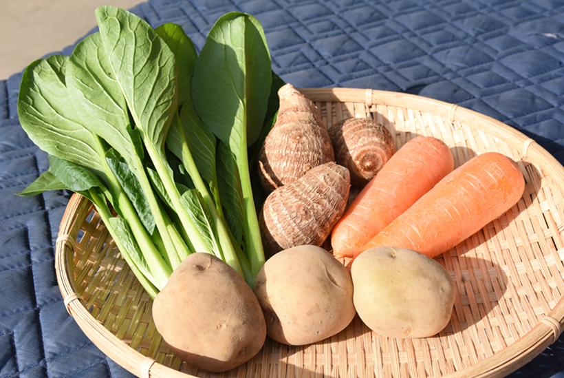 *野菜の形や色の良さから丁寧に育てているのが伝わってくる