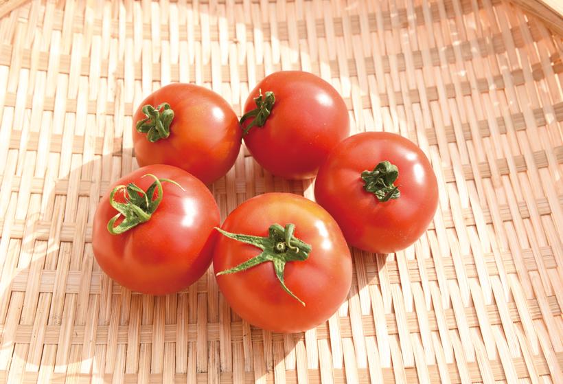 *群馬生まれのフルーツトマト「甘しずく」