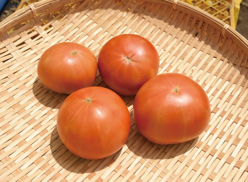 *ぜいたくトマト700g 300円〜  販売時期…7月上旬〜10月中旬 食べ方…採れたてをそのまま 栄養…カリウム、リコピン、ビタミンA、ビタミンC、ビタミンE、ルチン、ビタミンB6、食物繊維