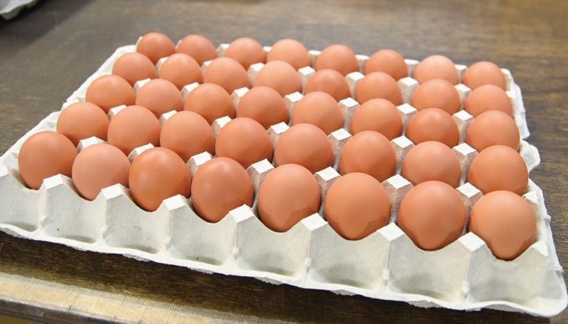 *「岩田のおいしい卵」 大玉15個 ¥480 厳選卵大玉10個¥600 食べ方…卵かけご飯、温泉卵 栄養…たんぱく質、ビタミンB2、ビタミンA、鉄等