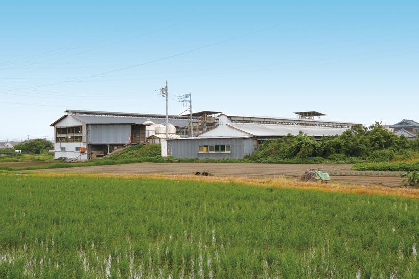*高崎農場