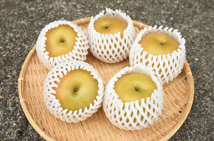 *梨 1kg 540円(税込)  販売時期…8月〜10月いっぱい 食べ方…なるべく早くそのまま 栄養…カリウム、食物繊維等