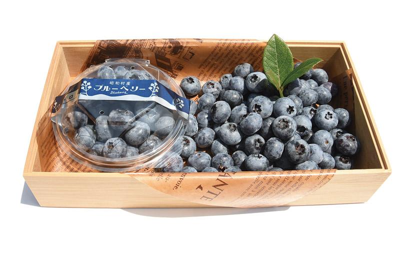*ブルーベリー 販売時期…6月下旬〜8月中旬頃 食べ方…そのまま 栄養…カリウム、ビタミンC、カルシウム、マグネシウム 等